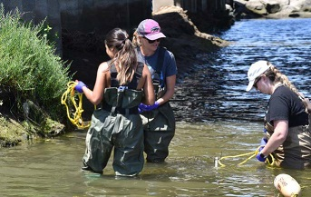 Scientific foundation established to question California shellfish water-quality objective